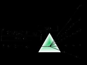 levoxx_client_services_logo_2