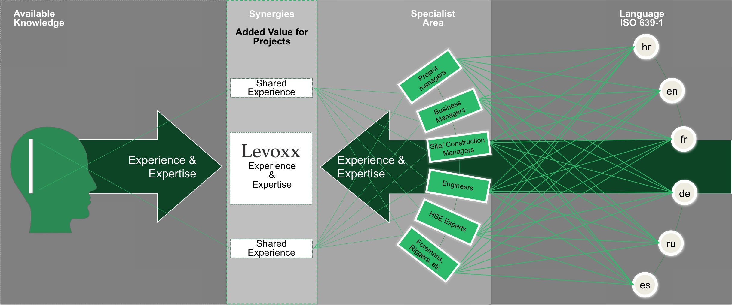 levoxx_knowledge_management_process_1